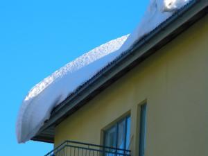 Sundejte slona ze své střechy, radí Allianz